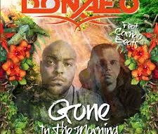 Donae'O ft Carnao Beats|Gone In The Morning |Official Video