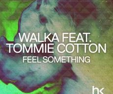 Walka |feat. Tommie Cotton |Feel Something