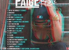 Paigey Cakey|The Right Paige Mixtape |Free Download‏