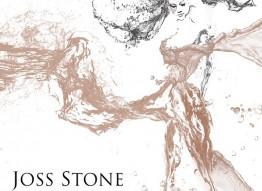 Joss Stone   Molly Town