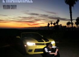 L Marshall - Yellow Chevy